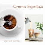 카페창업과정